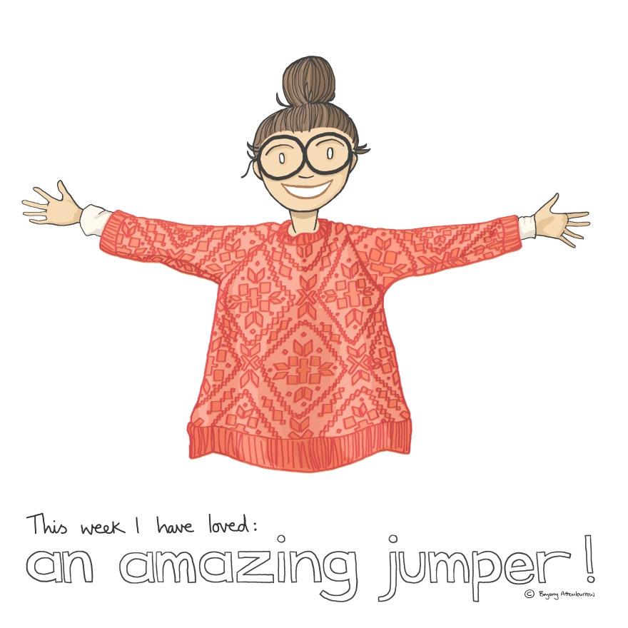 35-this-week-amazing-jumper